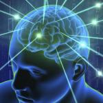 brain blood barrier