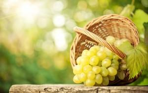 White Grapes (Vitis Vinifera)